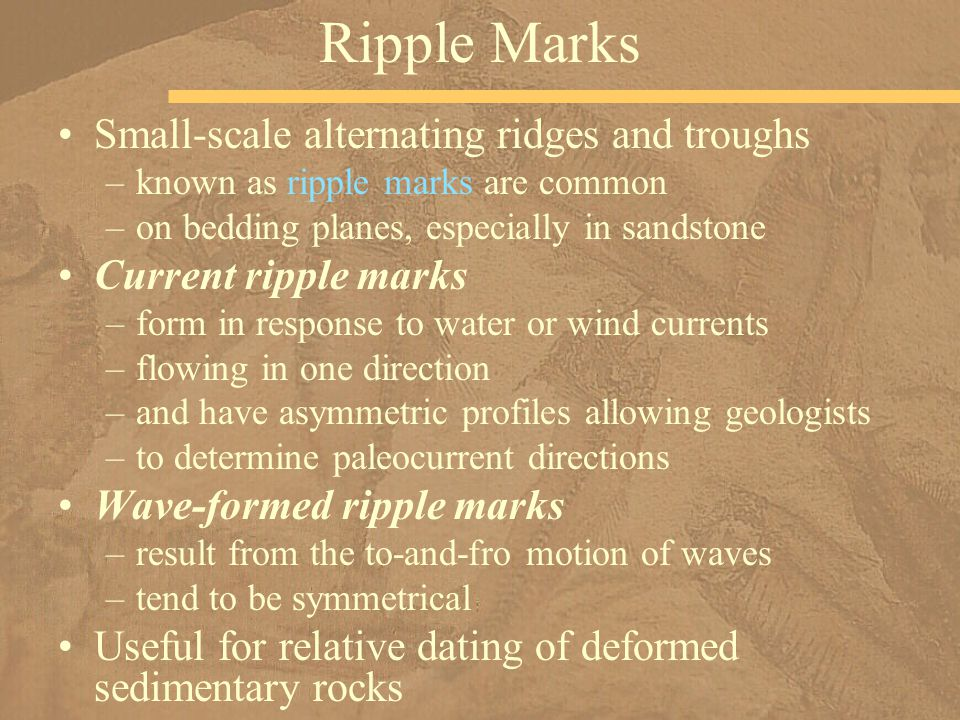 Ripple Marks Small-scale alternating ridges and troughs