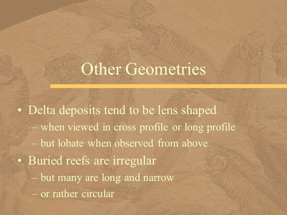 Other Geometries Delta deposits tend to be lens shaped
