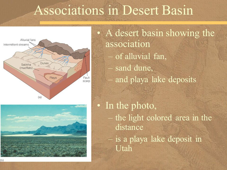 Associations in Desert Basin