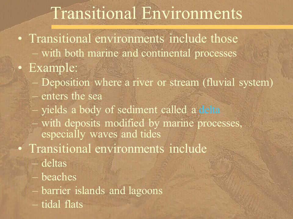 Transitional Environments