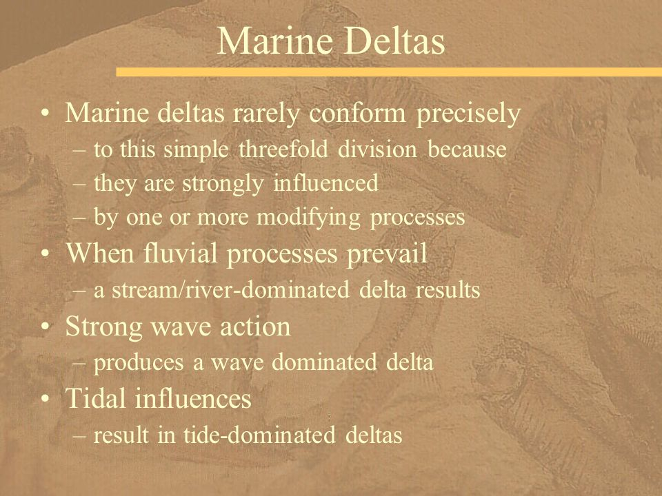 Marine Deltas Marine deltas rarely conform precisely