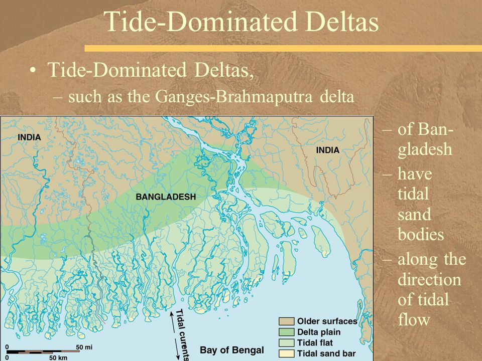Tide-Dominated Deltas