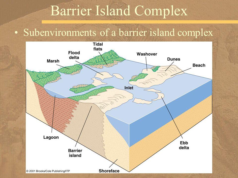 Barrier Island Complex