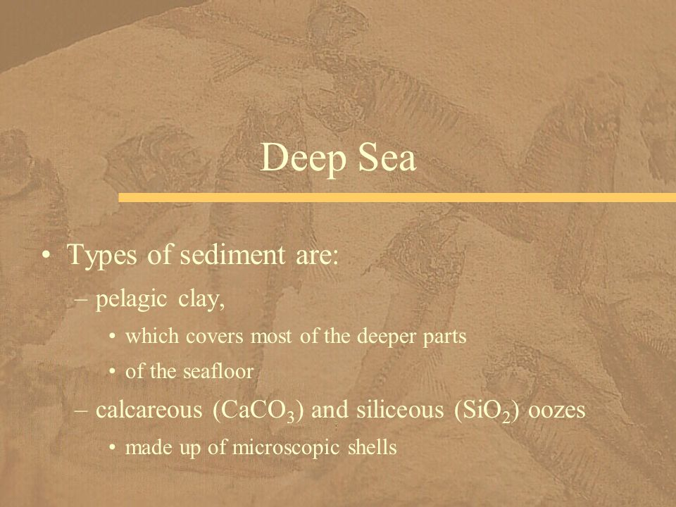 Deep Sea Types of sediment are: pelagic clay,