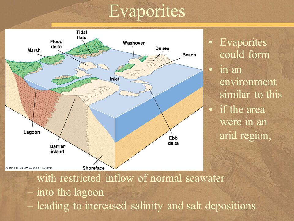 Evaporites Evaporites could form in an environment similar to this