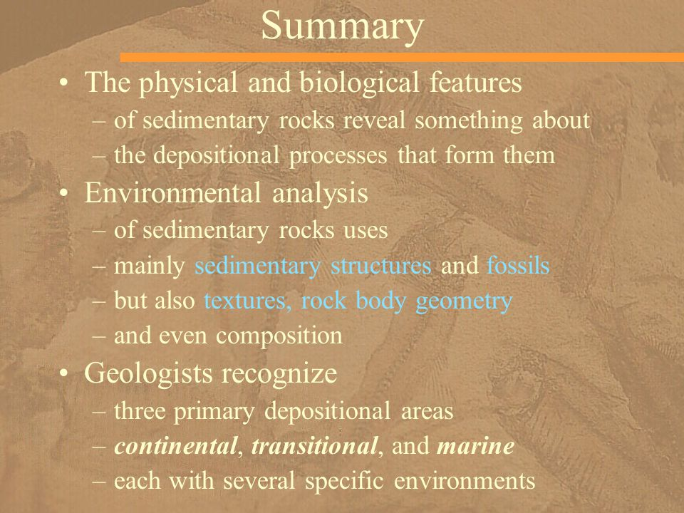 Summary The physical and biological features Environmental analysis