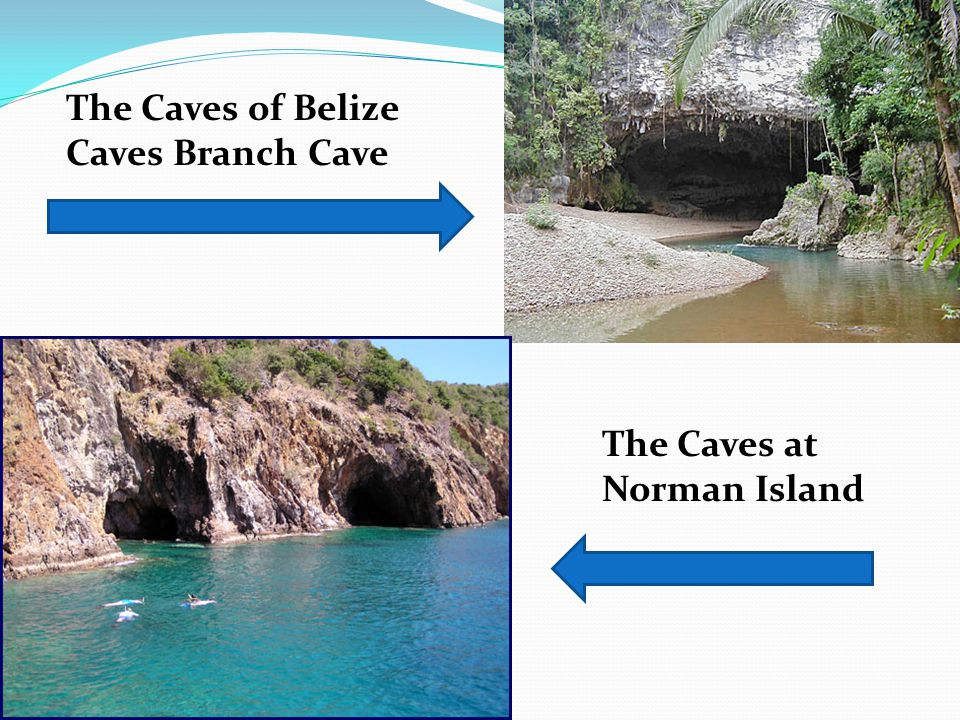 The Caves of Belize Caves Branch Cave
