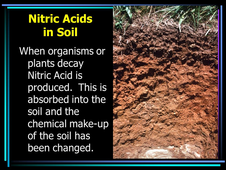 Nitric Acids in Soil