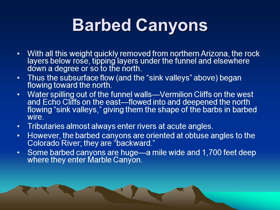 Barbed Canyons