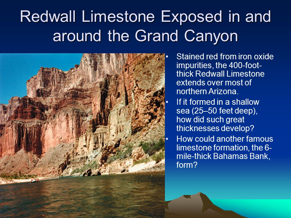 Redwall Limestone Exposed in and around the Grand Canyon