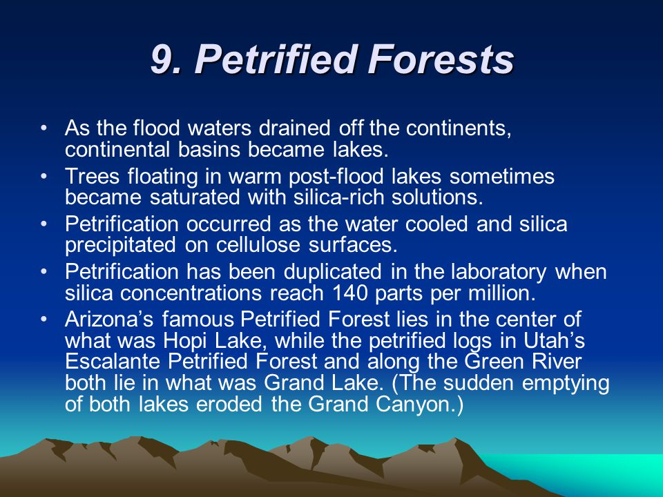 9. Petrified Forests As the flood waters drained off the continents, continental basins became lakes.
