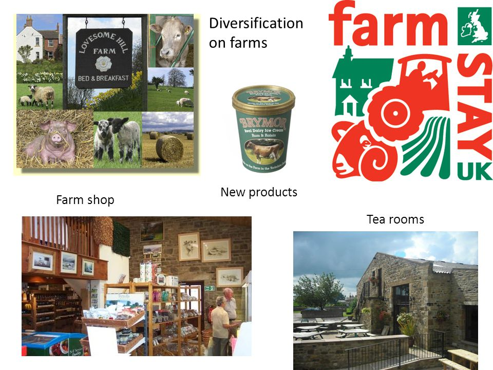 Diversification on farms New products Farm shop Tea rooms