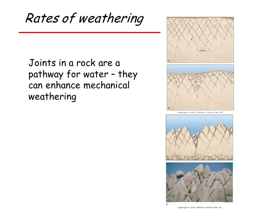 Rates of weathering Joints in a rock are a pathway for water – they can enhance mechanical weathering.