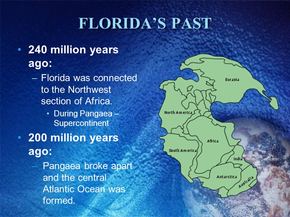 FLORIDA'S PAST 240 million years ago: 200 million years ago:
