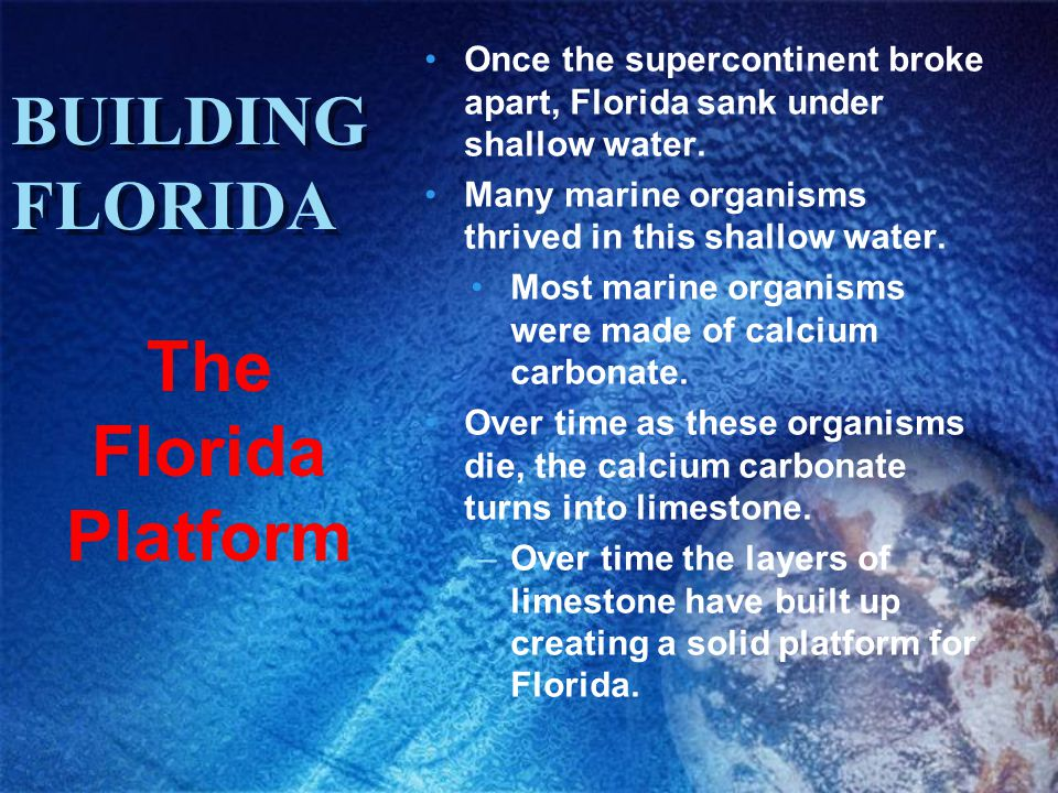 BUILDING FLORIDA The Florida Platform