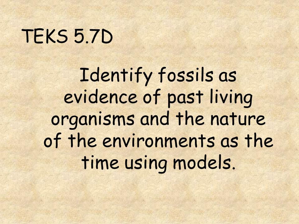 TEKS 5.7D Identify fossils as evidence of past living organisms and the nature of the environments as the time using models.