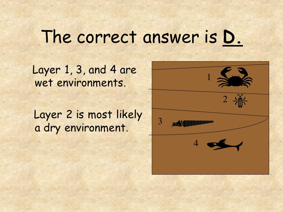 The correct answer is D. Layer 1, 3, and 4 are wet environments.