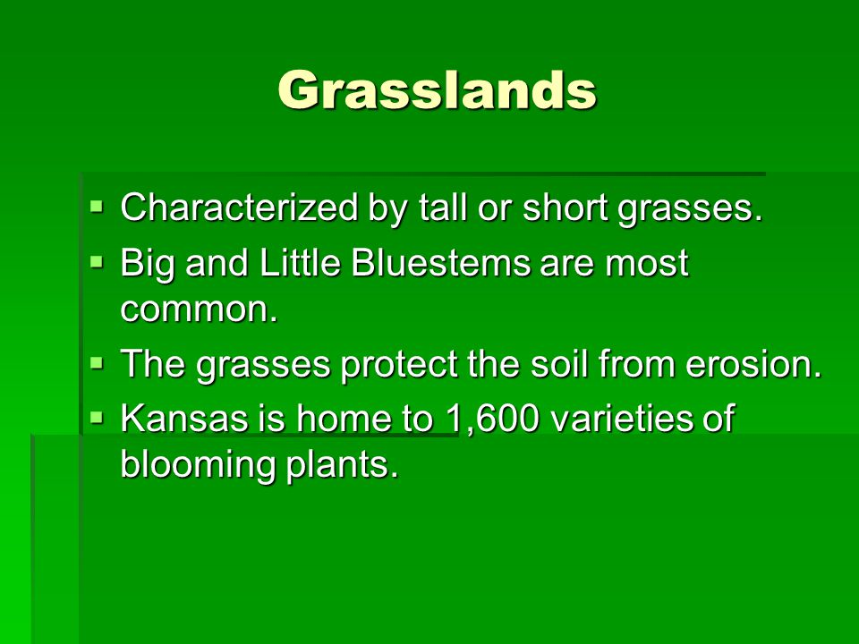 Grasslands Characterized by tall or short grasses.
