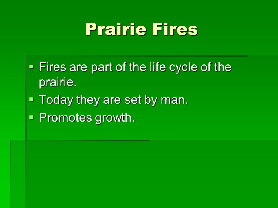Prairie Fires Fires are part of the life cycle of the prairie.