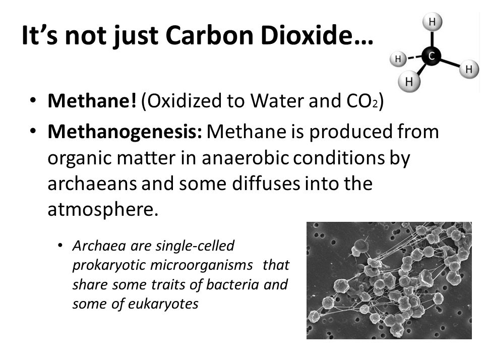 It's not just Carbon Dioxide…
