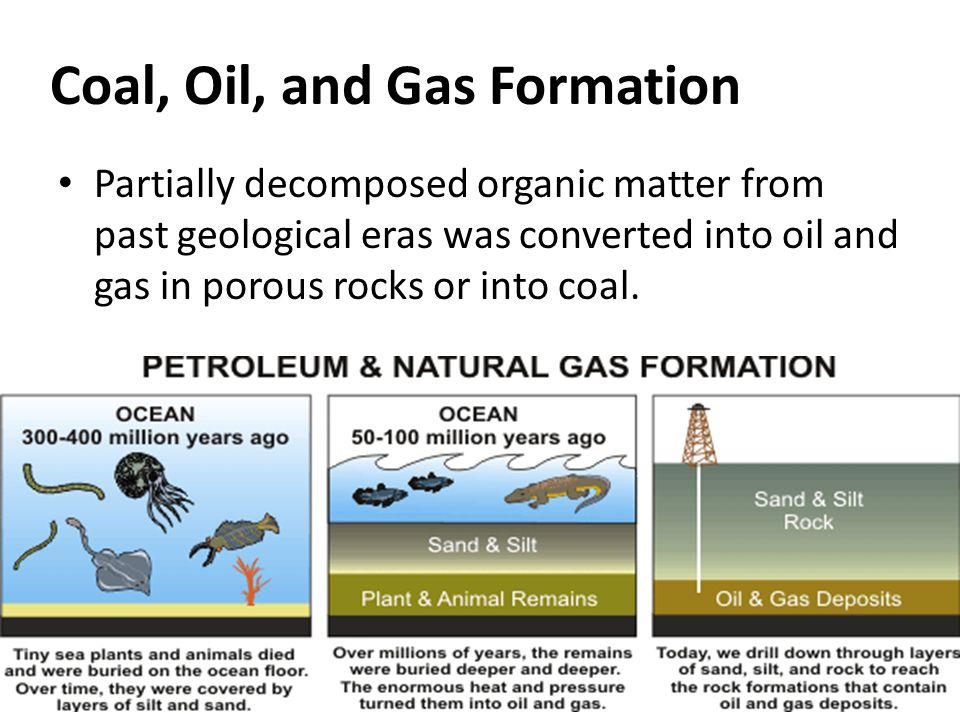 Coal, Oil, and Gas Formation