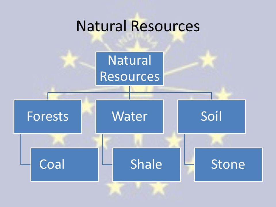 Natural Resources Natural Resources Forests Coal Water Shale Soil