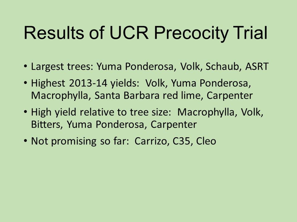 Results of UCR Precocity Trial