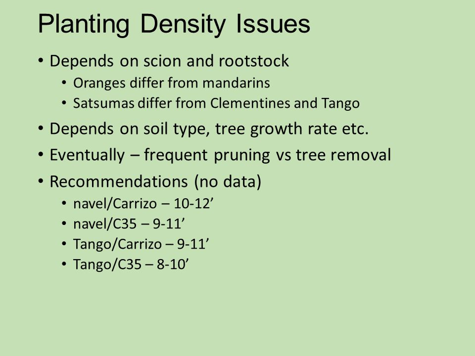 Planting Density Issues
