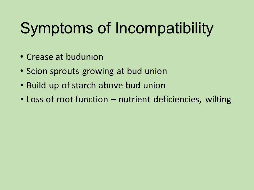 Symptoms of Incompatibility