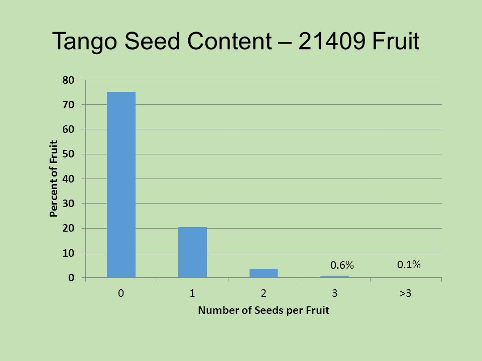 Tango Seed Content – 21409 Fruit