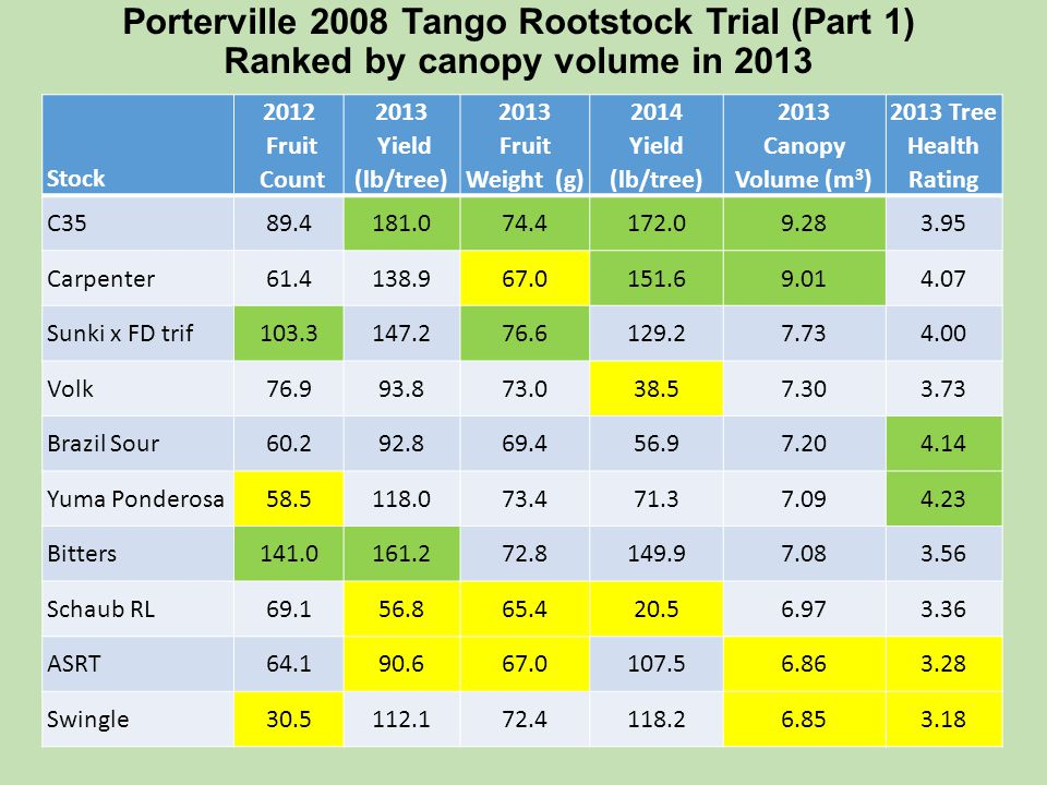 Porterville 2008 Tango Rootstock Trial (Part 1) Ranked by canopy volume in 2013