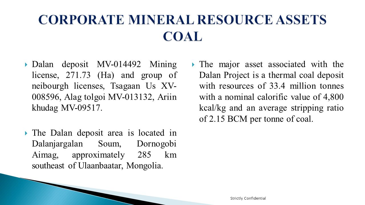CORPORATE MINERAL RESOURCE ASSETS COAL