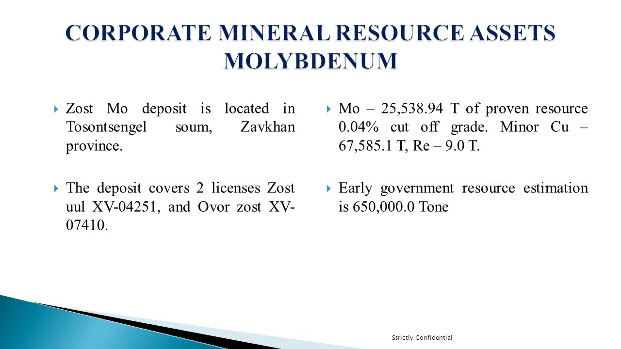 CORPORATE MINERAL RESOURCE ASSETS MOLYBDENUM