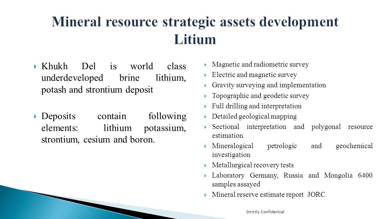 Mineral resource strategic assets development Litium