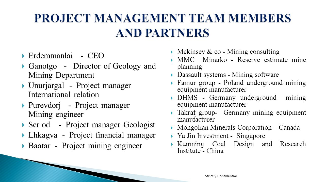 PROJECT MANAGEMENT TEAM MEMBERS AND PARTNERS