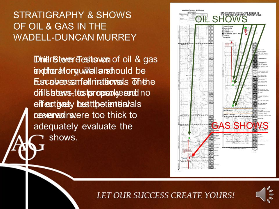 STRATIGRAPHY & SHOWS OF OIL & GAS IN THE. WADELL-DUNCAN MURREY. OIL SHOWS.