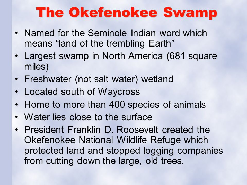 The Okefenokee Swamp Named for the Seminole Indian word which means land of the trembling Earth Largest swamp in North America (681 square miles)