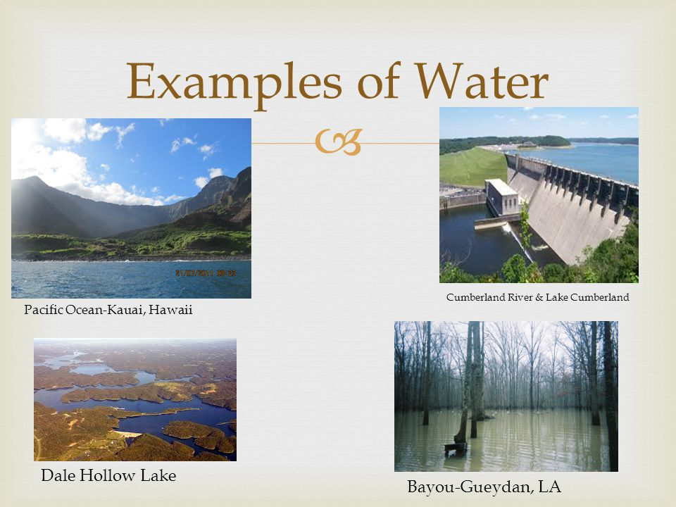 Examples of Water Dale Hollow Lake Bayou-Gueydan, LA