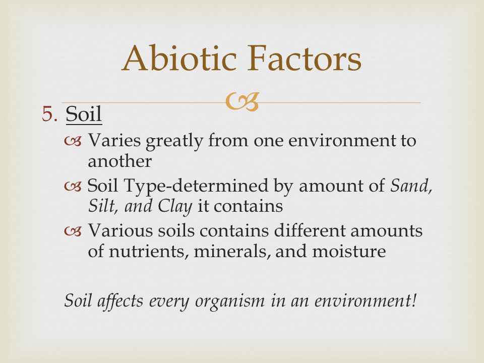 Abiotic Factors Soil Varies greatly from one environment to another