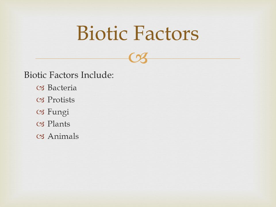 Biotic Factors Biotic Factors Include: Bacteria Protists Fungi Plants