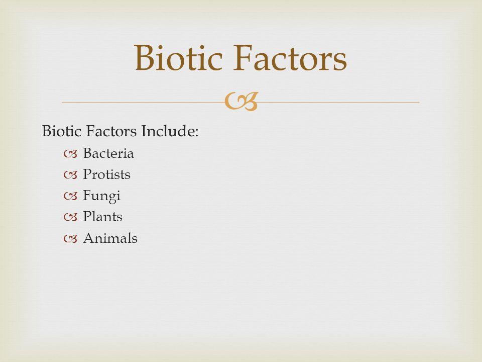 Biotic Factors Biotic Factors Include: Bacteria Protists Fungi Plants