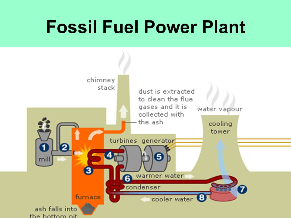 Fossil Fuel Power Plant : Steam power plant sitki gÜner ppt download