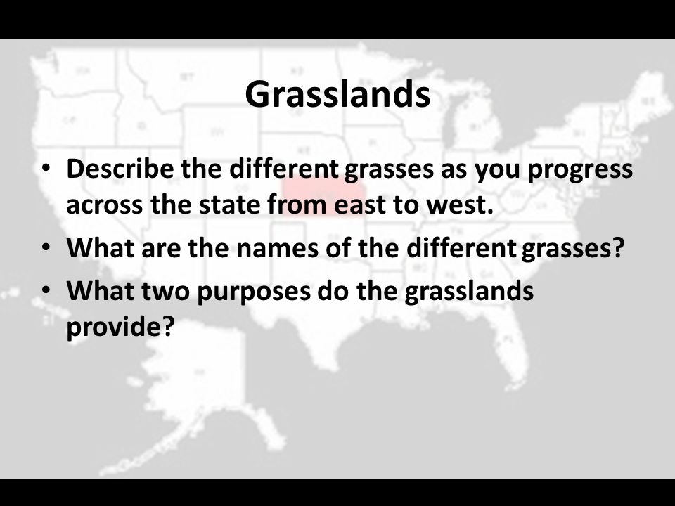 Grasslands Describe the different grasses as you progress across the state from east to west. What are the names of the different grasses