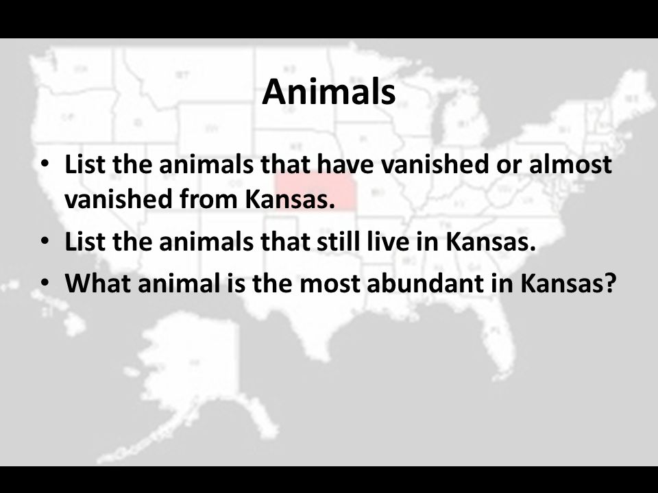 Animals List the animals that have vanished or almost vanished from Kansas. List the animals that still live in Kansas.