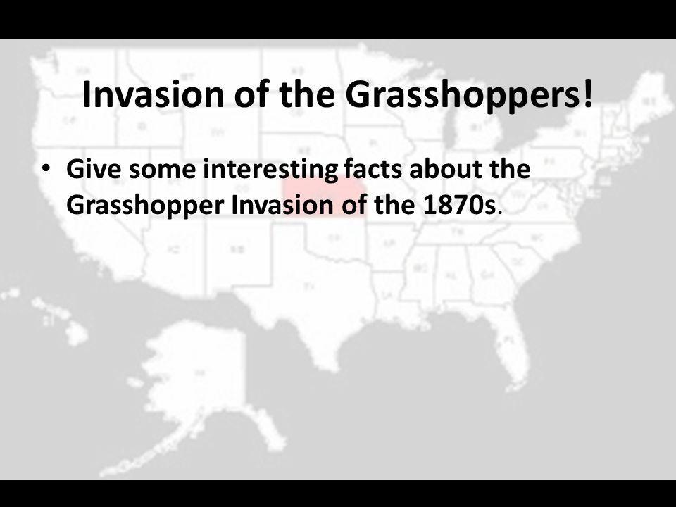Invasion of the Grasshoppers!