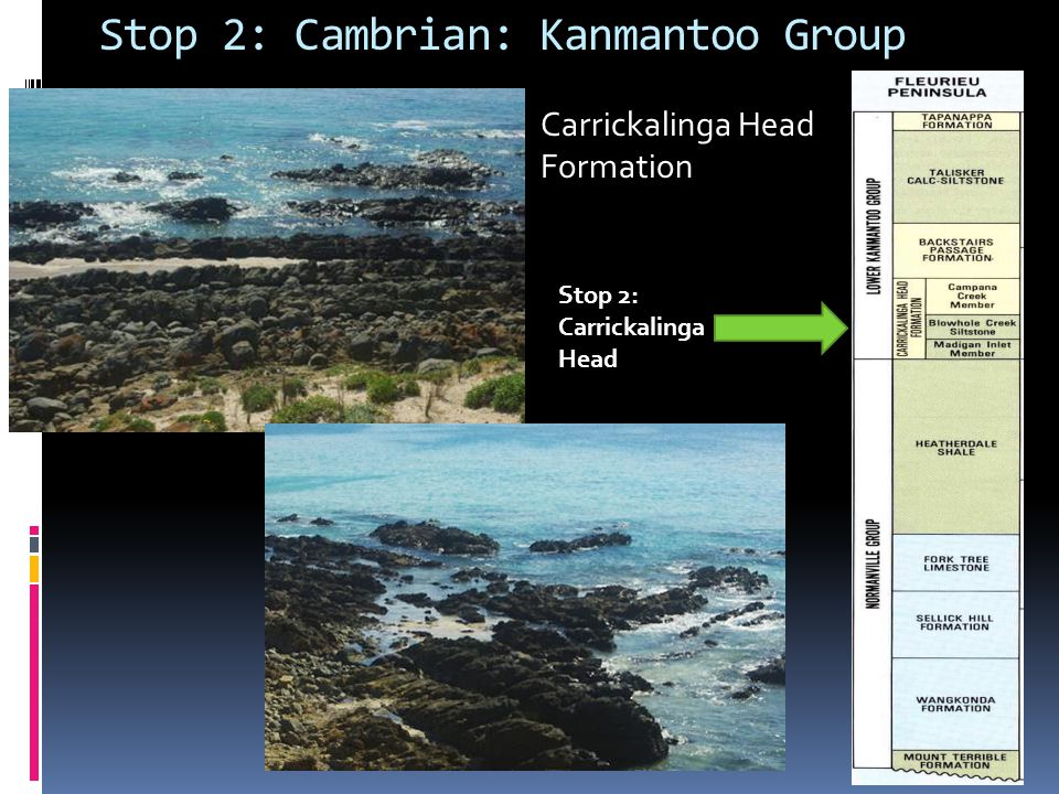 Stop 2: Cambrian: Kanmantoo Group
