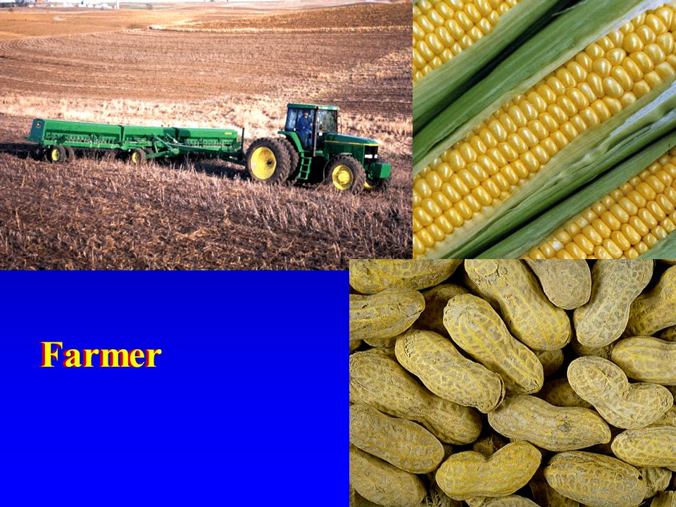 10. To the farmer it may mean the medium on which to grow crops.