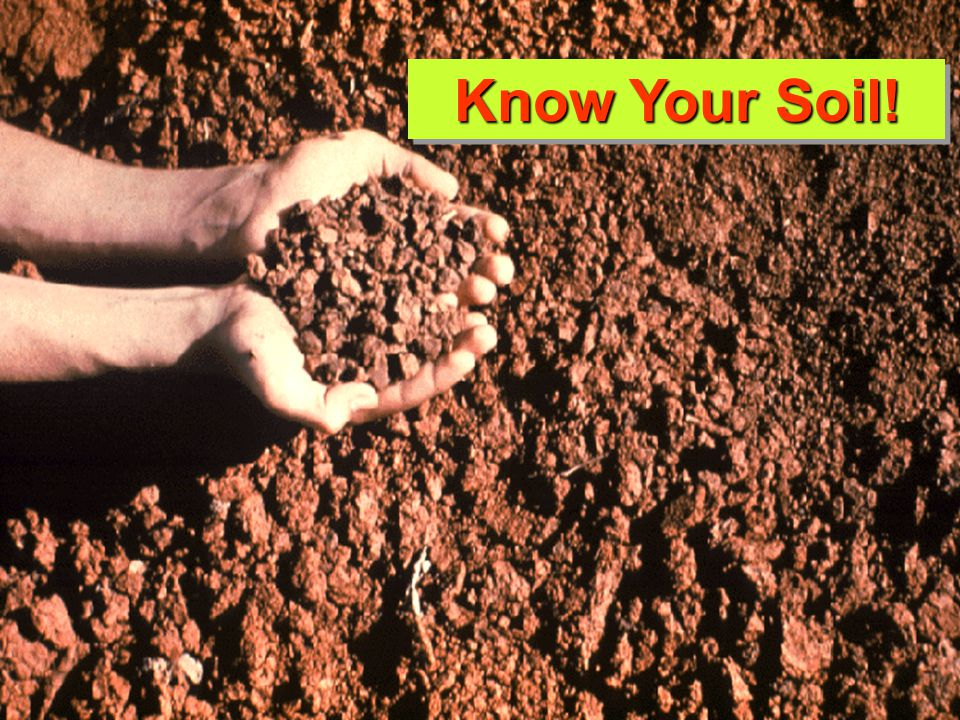 Know Your Soil!