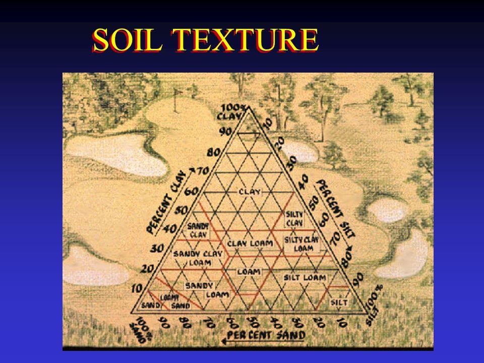 SOIL TEXTURE 20. Soil texture is a very important soil feature.
