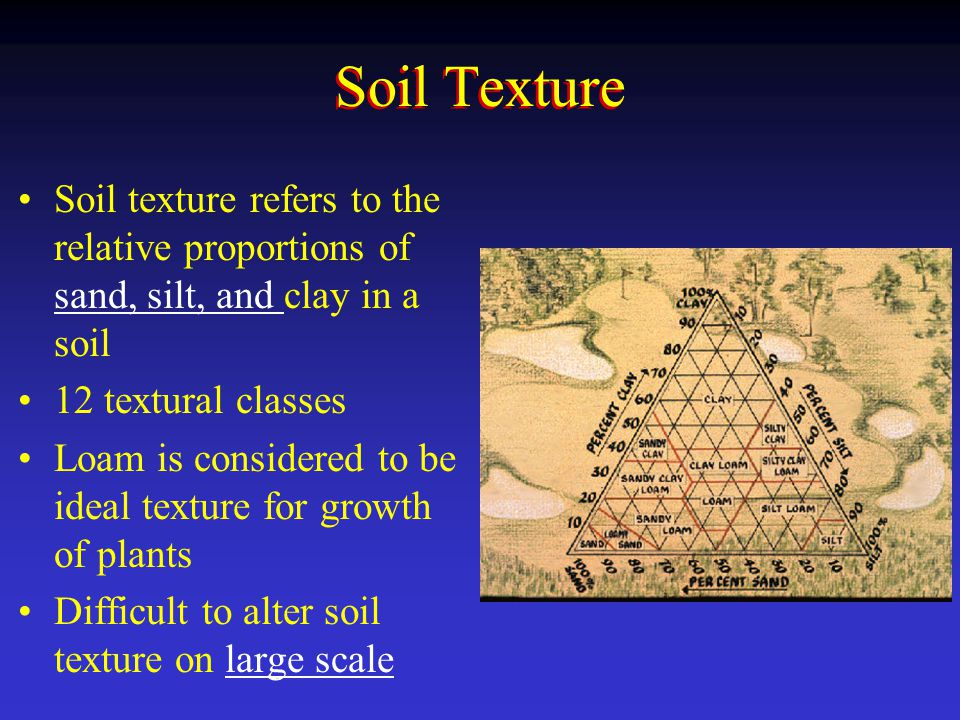 Soil Texture Soil texture refers to the relative proportions of sand, silt, and clay in a soil. 12 textural classes.